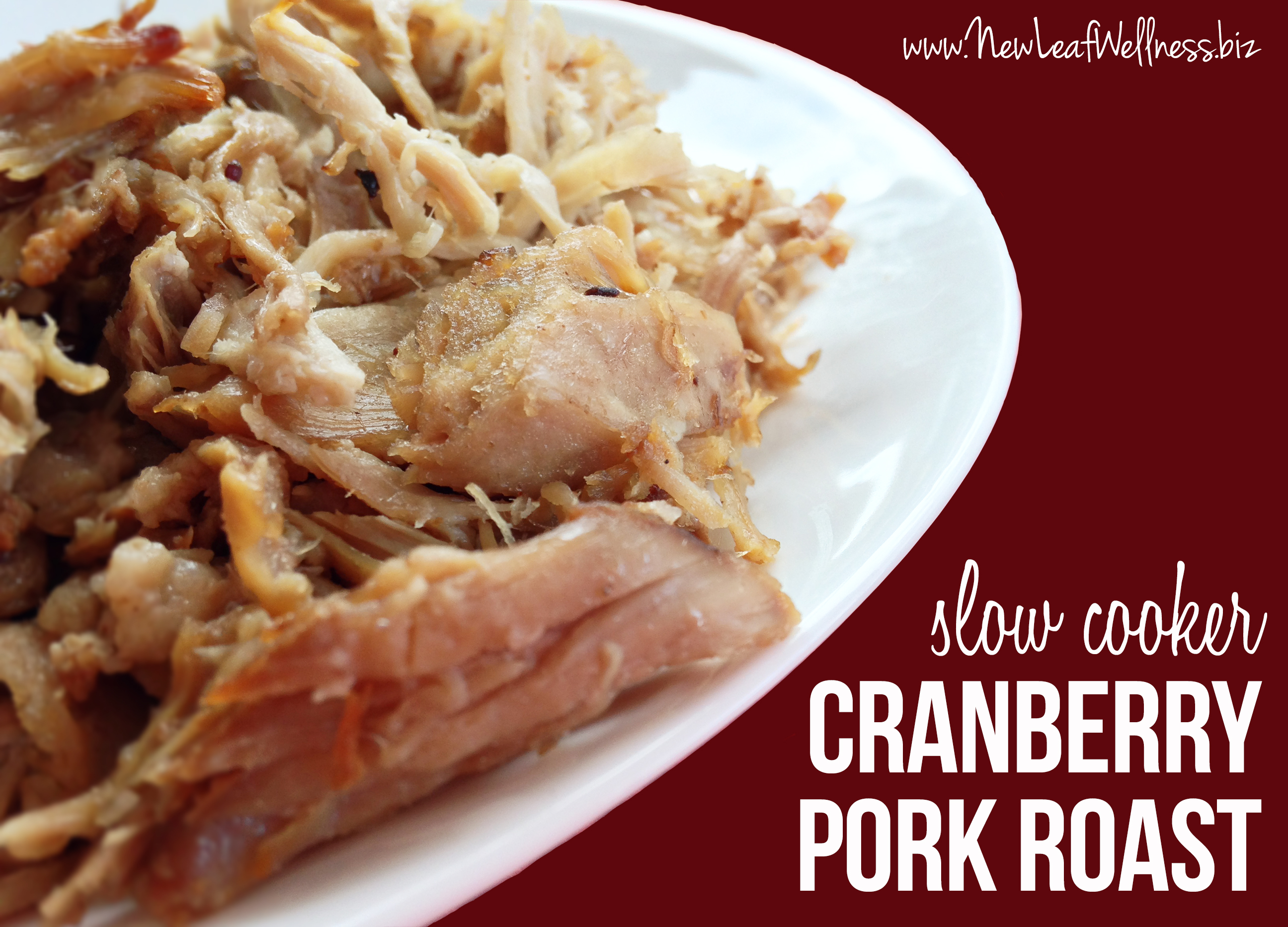 Crockpot Cranberry Pork Roast Recipes — Dishmaps