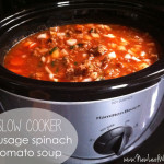 Slow cooker sausage spinach tomato soup recipe