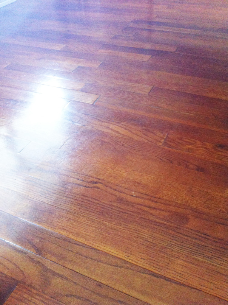 Cleaning schedule - mopped floors