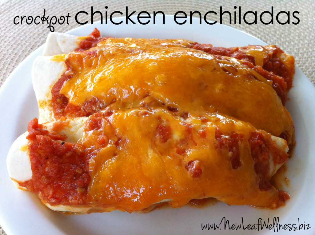 Five chicken crockpot recipes - chicken enchiladas