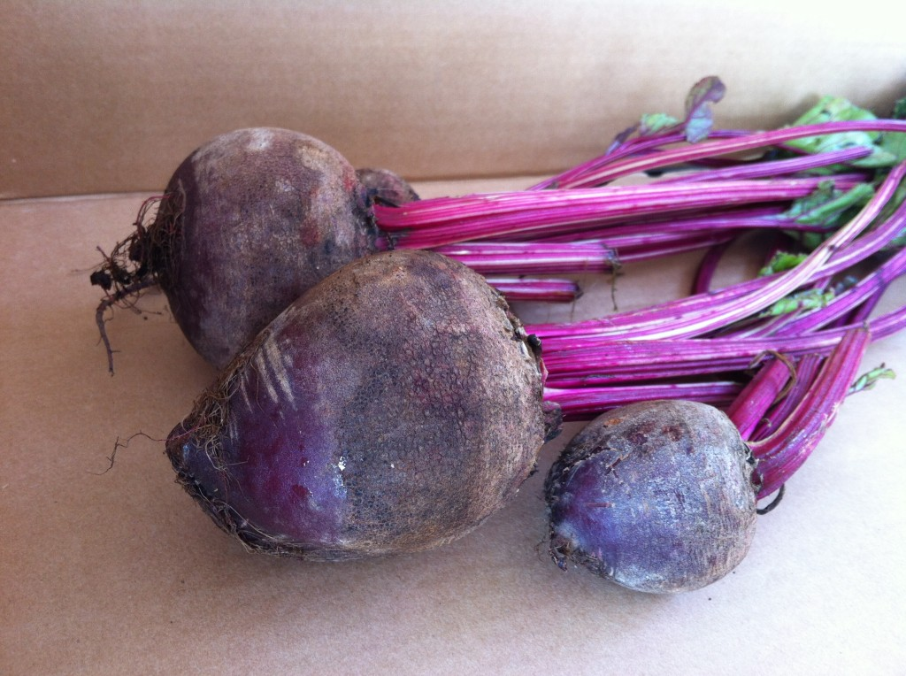 Recipe for roasted beets from @kellymcnelis
