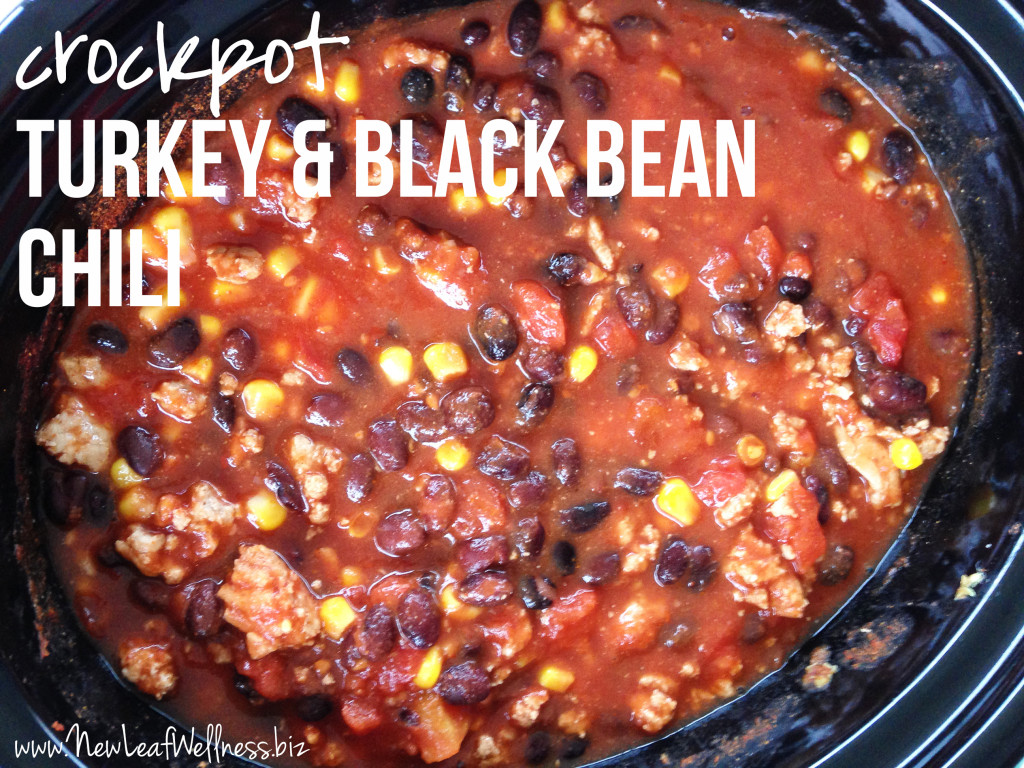 Crockpot Chili Recipes - Turkey and Black Bean Chili