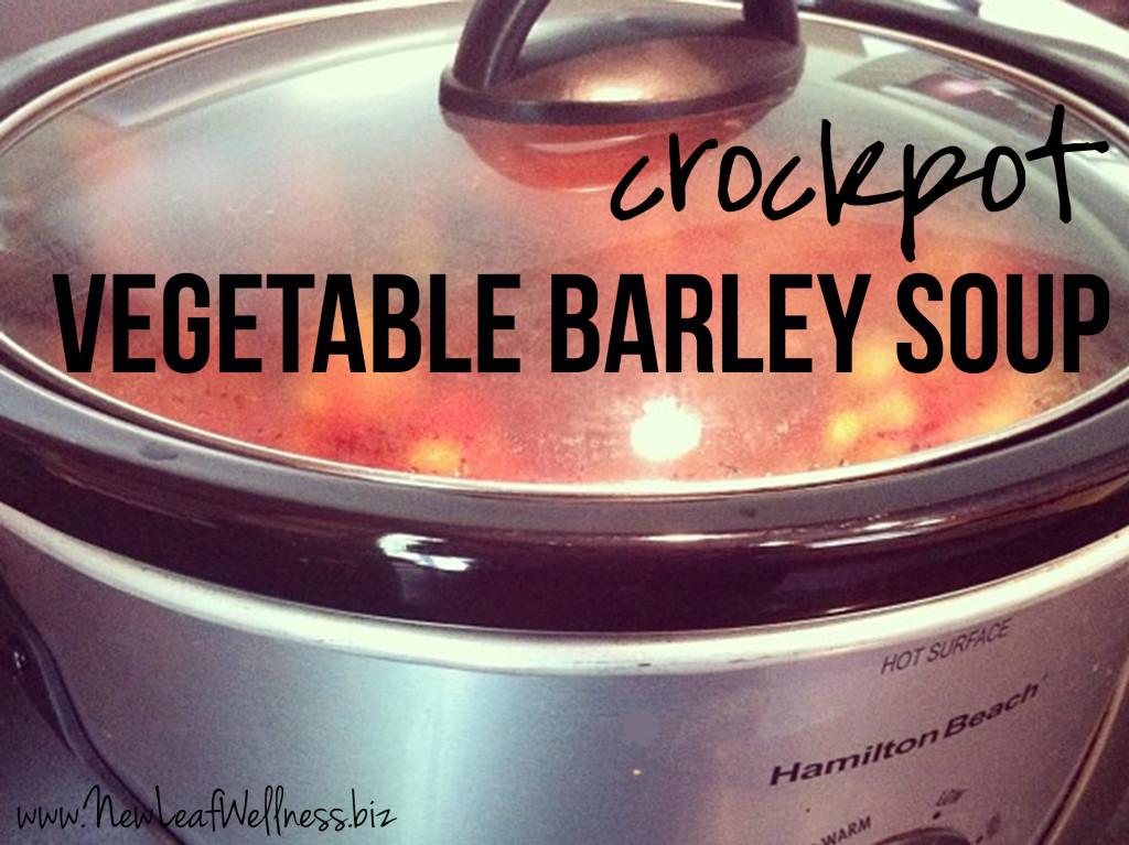 Crockpot Soup Recipes - Vegetable Barley Soup
