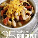 Twenty-five chicken crockpot recipes