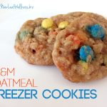 Freezer cookie recipe with oats and M&Ms