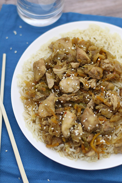 Asian Crockpot Freezer Meals