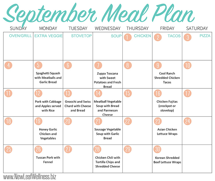 Healthy Crockpot Freezer Meals To Make In September  New Leaf